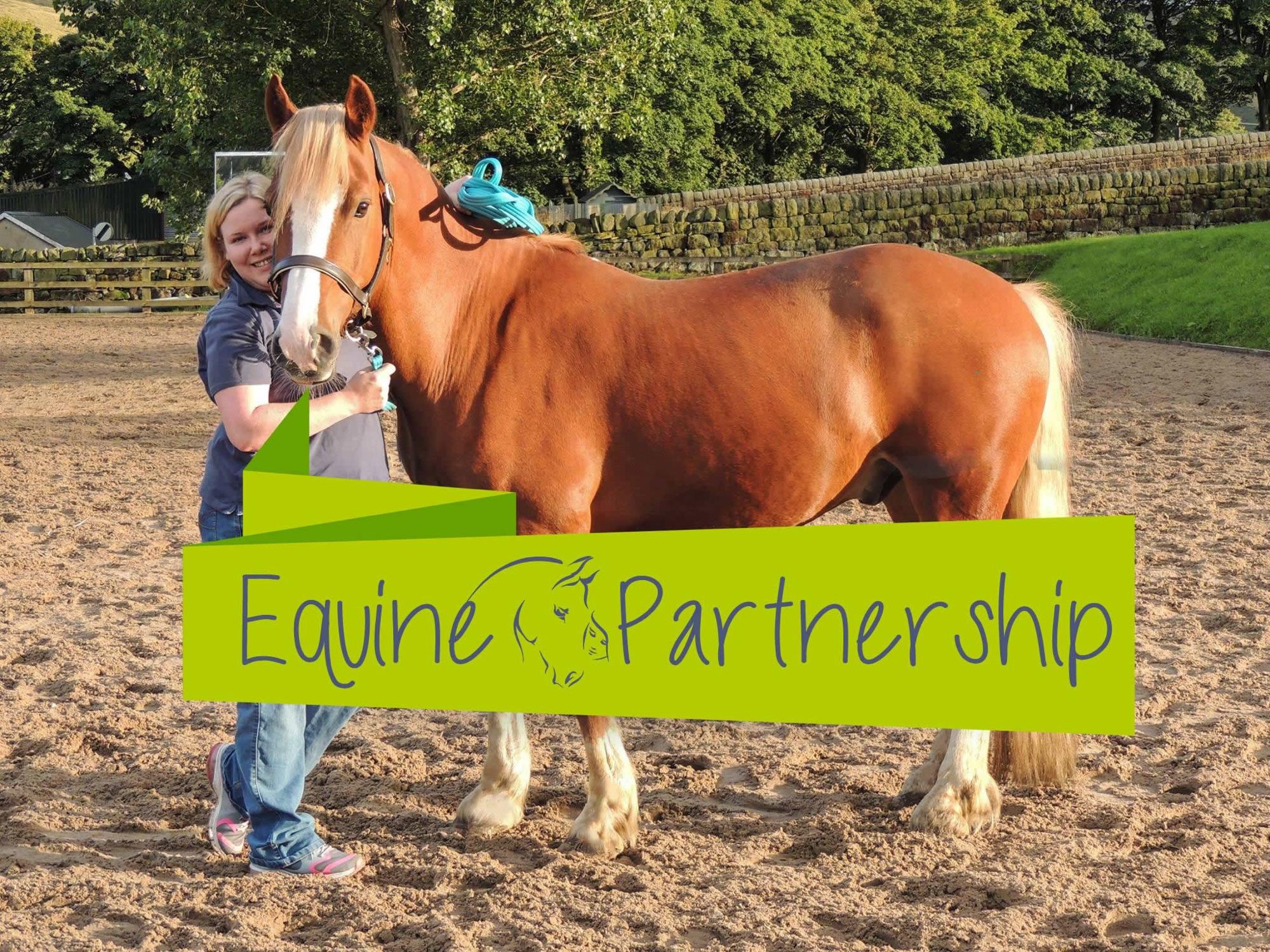 Equine partnreship