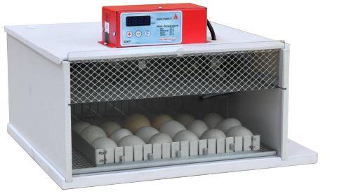 Maino PioPio 25 Egg Incubator D