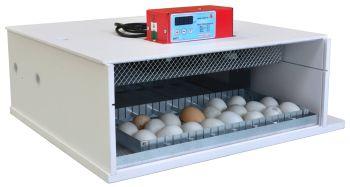 Maino PioPio 56 D Egg Incubator