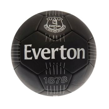 Everton Skill Ball RT (Size 1)