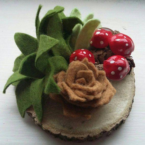 Succulent Decoration