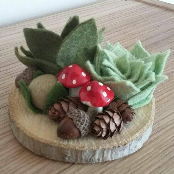 Succulent Decoration