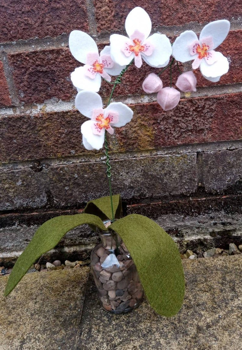 Felt Orchids