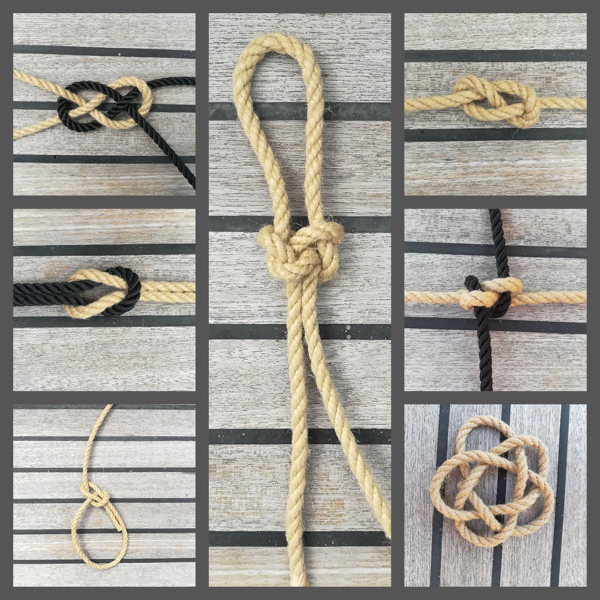 Specialist in Nautical Knots