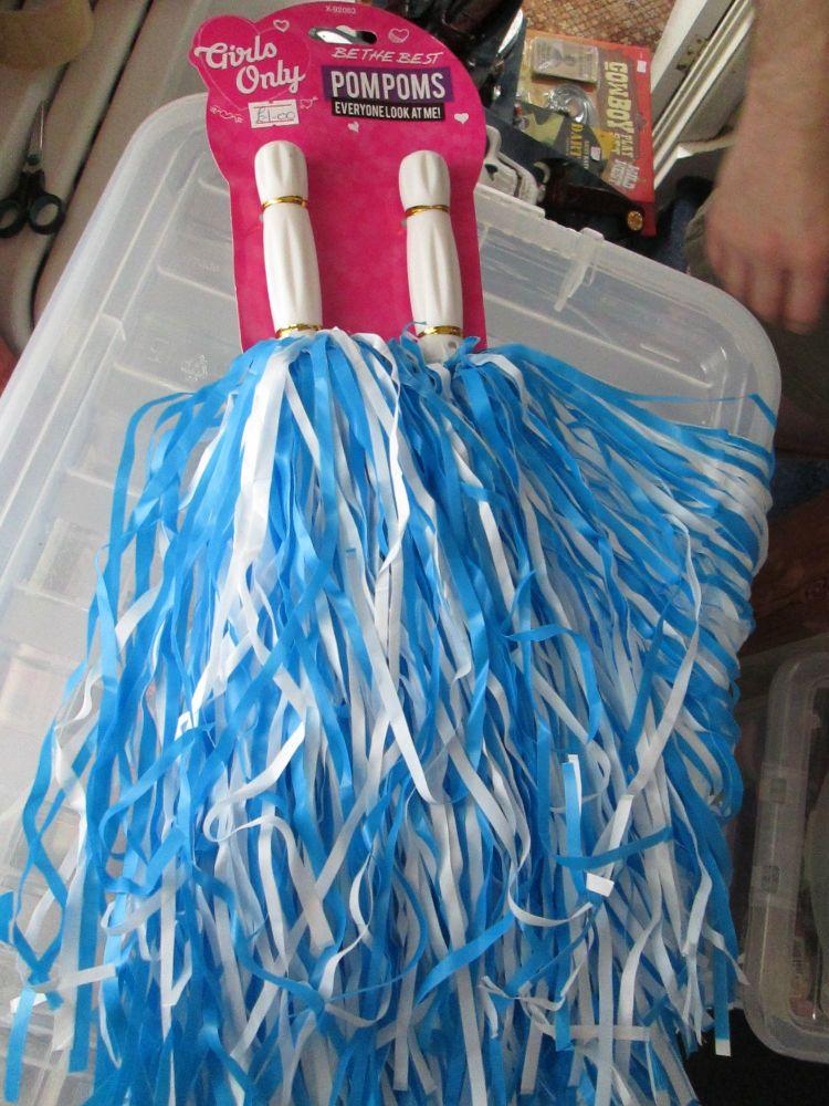 Blue & White Girls Only Plastic Pom Poms