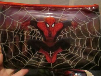 Marvel Ultimate Spiderman - Licensed PVC Flatline Pencil Case