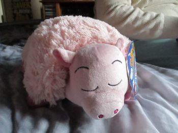 Pink Pig - Transforming Cuddle Cushion Pals - Soft Toy