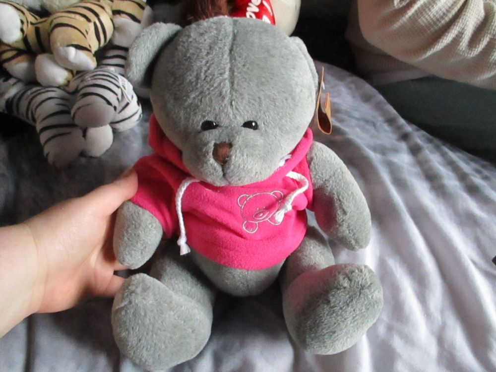 Grey Bear with Pink Hoodie - Hugs & Co - Soft Toy
