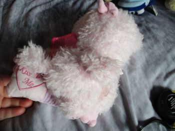 Pink Kiss Me Pillow Pig - Cotton Candy - Soft Toy