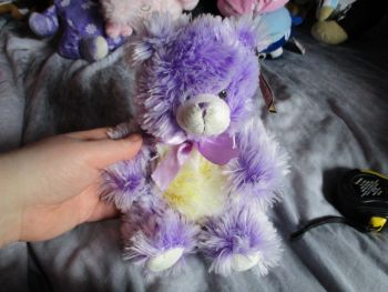 Purple Frosted Bear - Soft Sensations - Soft Toy
