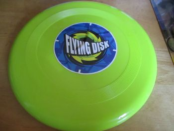 Lime Green Plastic Flying Disk