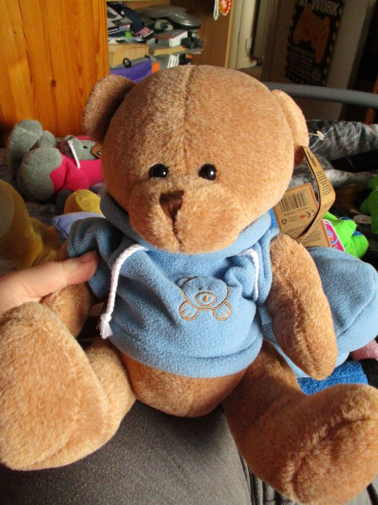 Brown Bear with Blue Hoodie - Hugs & Co - Soft Toy
