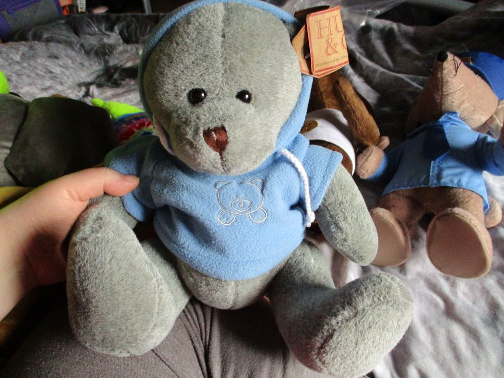 Grey Bear with Blue Hoodie - Hugs & Co - Soft Toy