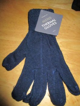 Blue Mens Thermal Gloves