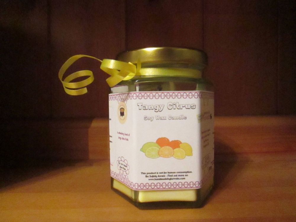 Tangy Citrus Scented Soy Wax Candle 300g