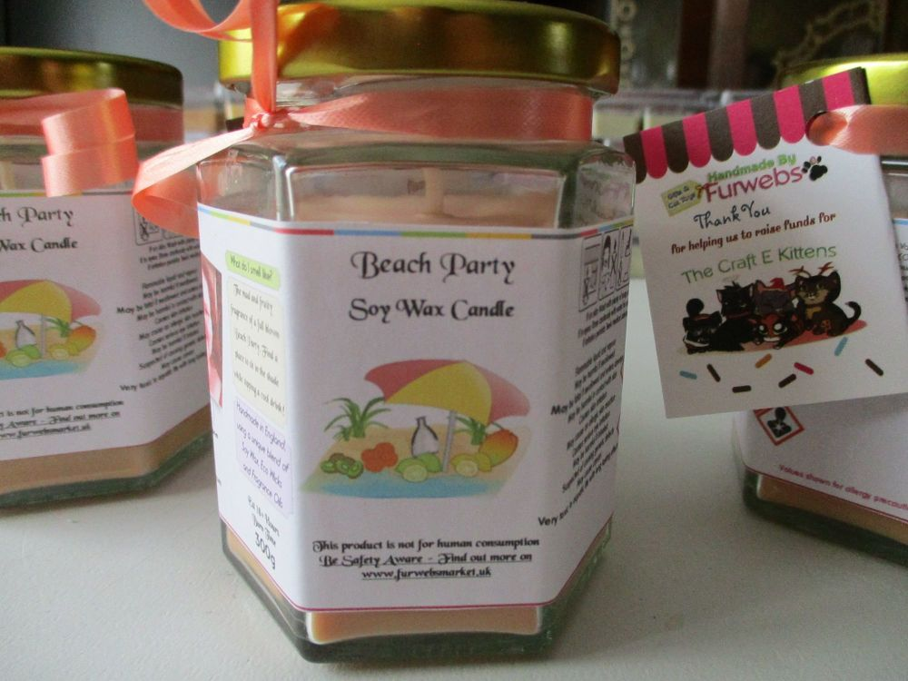 Beach Party Scented Soy Wax Candle 300g
