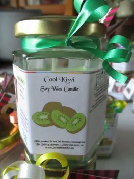 Cool Kiwi Scented Soy Wax Candle 300g