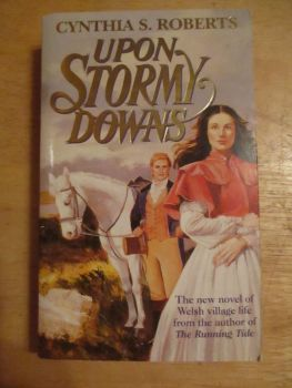 Cynthia S Roberts - Upon Stormy Downs - Paperback