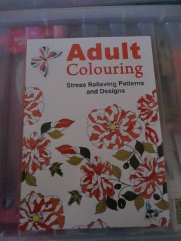 Orange Butterfly Cover - Adult Colouring - 24pg Colouring Book