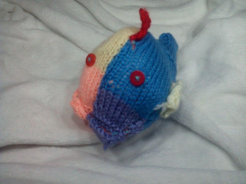 Mid Blue Green Peach Purple, Pale Yellow Fins - Red Head Fin Midi Fish With