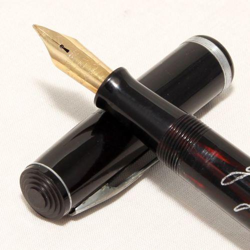 8462 Watermans Ideal Ink-Vue in Black. Medium FIVE STAR Nib.