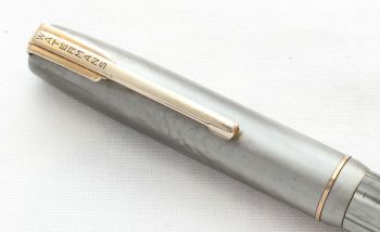 8603 Watermans W3/W5 Propelling Pencil in Grey Marble.