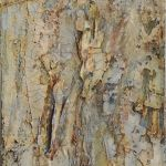 Cornish Stone 50x20cm Wrapped Canvas - Acrylics, Muslin