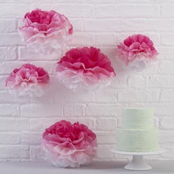 Pink Ombre Pom Poms - 5