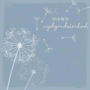 Mewn Cydymdeimlad - Card