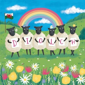 Diolch Sheep- Card