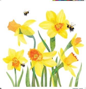 Daffodil & Bees - Card