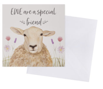 Ewe are a special friend - Card