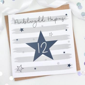 Blue Starry Stripes - Penblwydd Hapus 12 - Card