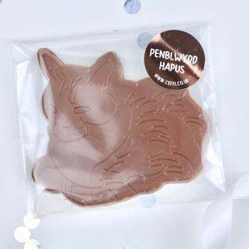 Penblwydd Hapus - Chocolate Cat