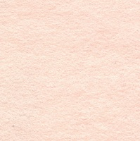 <!--010-->Flesh Pink