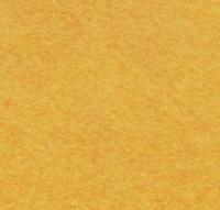 <!--096-->Mustard Seed