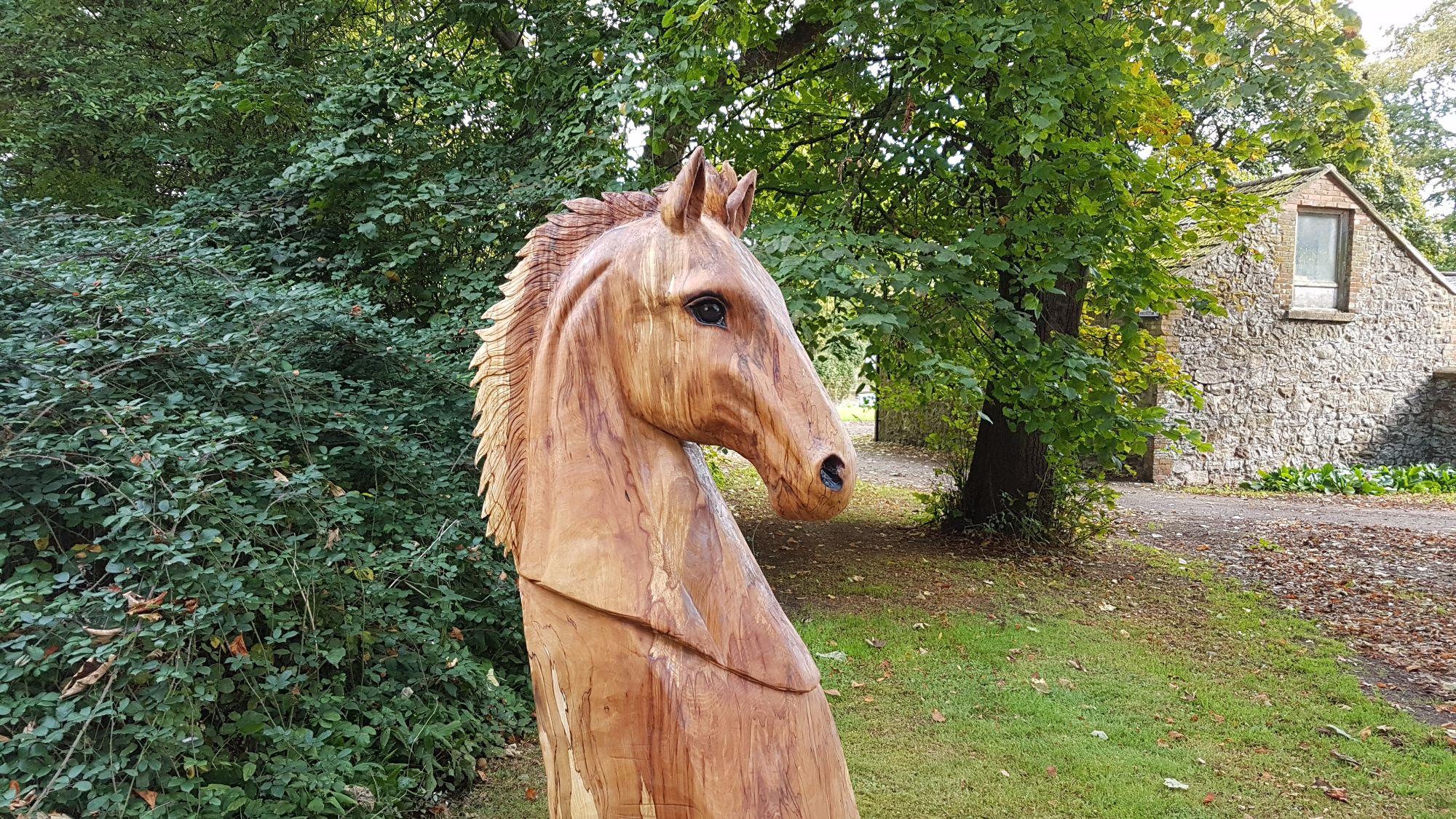 Horse head home 2