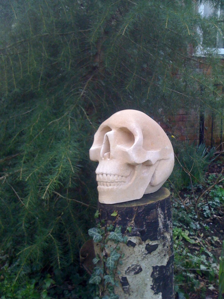 Skull carved from stone