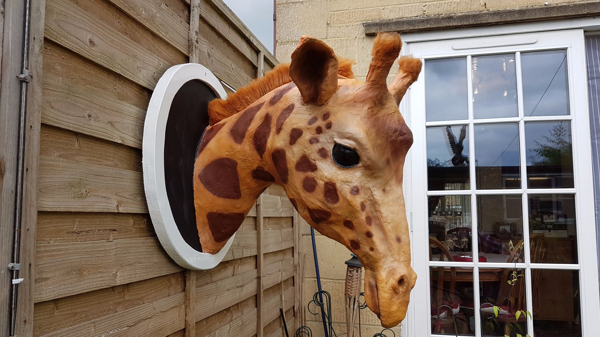 Giraffe chickenwire