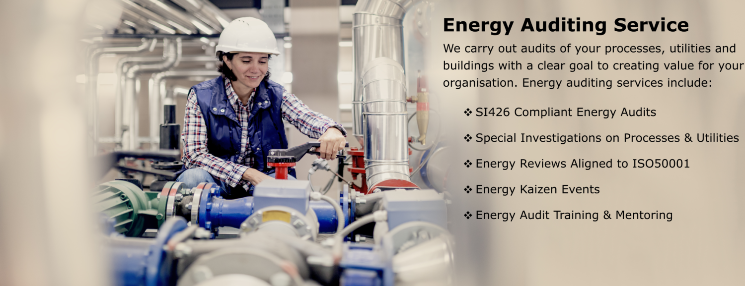 Energy Audit banner