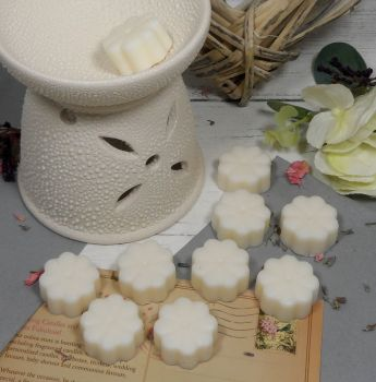 Absolutely Fab Cakes Aroma Wax Melts