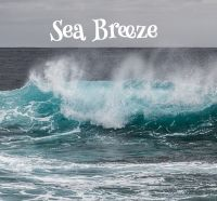 <!-- 006 -->Sea Breeze Aroma Wax Melts