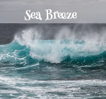 Sea Breeze Aroma Wax Melts
