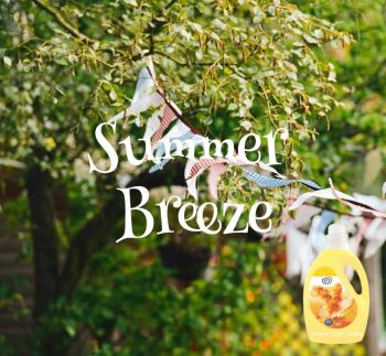 Lenor Summer Breeze Dupe Aroma Wax Melts