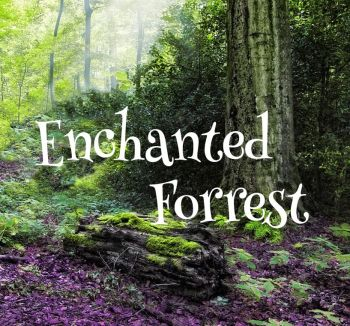 Enchanted Forrest Aroma Wax Melts