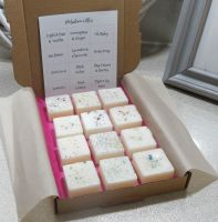Selection Box Scented Wax Melts (B)