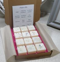 Selection Box Scented Wax Melts (C)