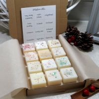 Festive Selection Box Scented Wax Melts (A)