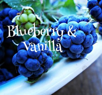 Blueberry and Vanilla Aroma Wax Melts