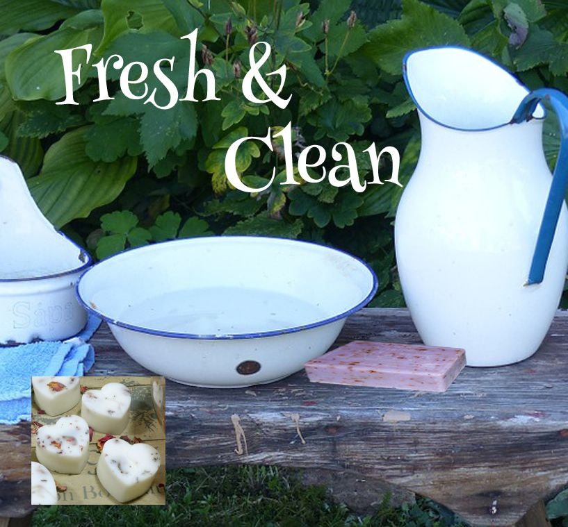 <!-- 004 -->Fresh and Clean - Aroma Wax Melts